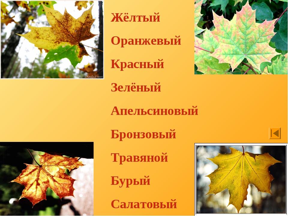 Жёлтый Оранжевый Красный Зелёный Апельсиновый Бронзовый Травяной Бурый Салато...