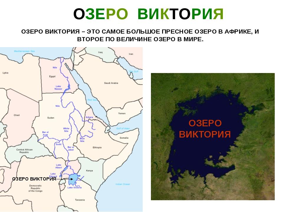 Карта где находится озеро виктория на карте