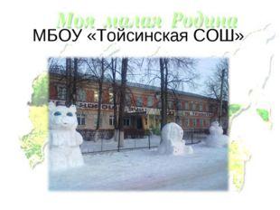 МБОУ «Тойсинская СОШ»