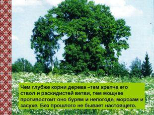 Чем глубже корни дерева –тем крепче его ствол и раскидистей ветви, тем мощнее