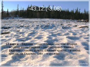-43,12:(-3,08) 14 марта – Евдокия – снег плющит настом. Вторая встреча весны(
