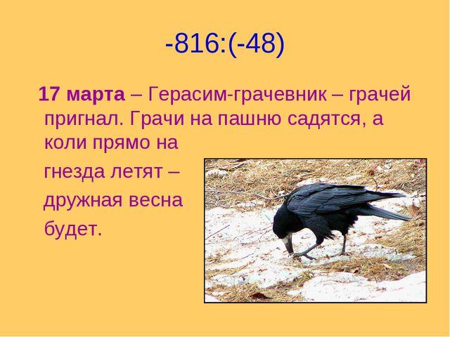 -816:(-48) 17 марта – Герасим-грачевник – грачей пригнал. Грачи на пашню садя...