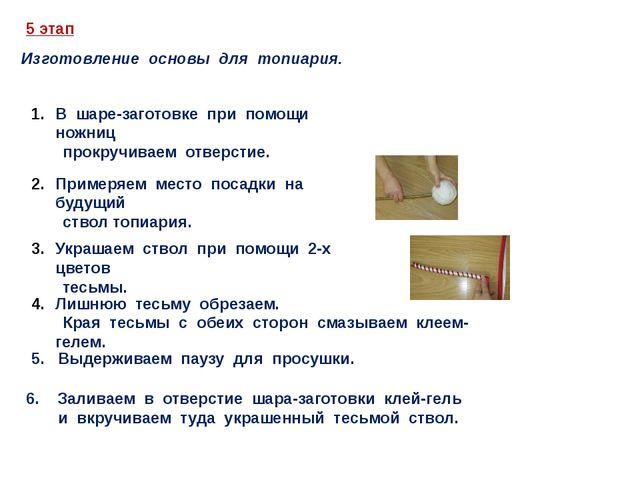 5 этап Изготовление основы для топиария. В шаре-заготовке при помощи ножниц п...