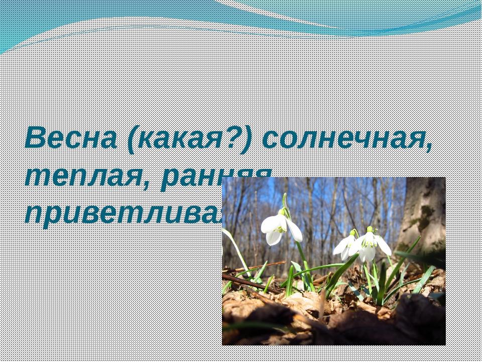 Весна (какая?) солнечная, теплая, ранняя, приветливая, яркая.