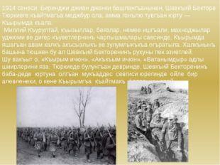 1914 сенеси, Биринджи джиан дженки башлангъанынен, Шевкъий Бекторе Тюркиеге к