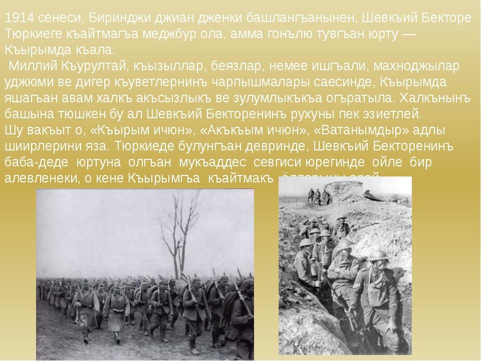 1914 сенеси, Биринджи джиан дженки башлангъанынен, Шевкъий Бекторе Тюркиеге к...