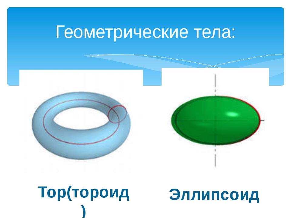 Геометрические тела: Тор(тороид) Эллипсоид