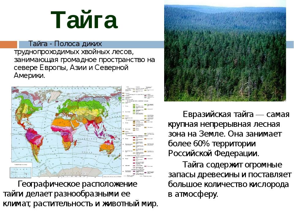 Тайга Географическое расположение тайги делает разнообразными ее климат, рас...