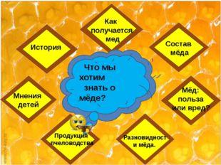 Мнения детей История Разновидности мёда. Что мы хотим знать о мёде? Как полу