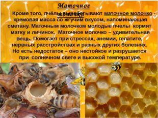 Кроме того, пчёлы вырабатывают маточное молочко - кремовая масса со жгучим в