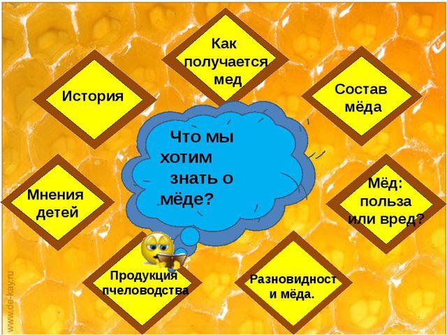 Мнения детей История Разновидности мёда. Что мы хотим знать о мёде? Как полу...