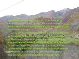 Почва является основной средой, в которую попадают тяжёлые металлы, в том чи