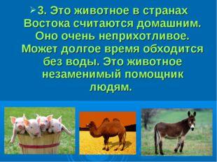 3. Это животное в странах Востока считаются домашним. Оно очень неприхотливо