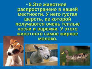 5.Это животное распространено в нашей местности. У него густая шерсть, из ко