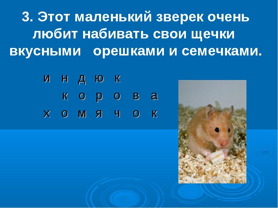 3. Этот маленький зверек очень любит набивать свои щечки вкусными орешками и...