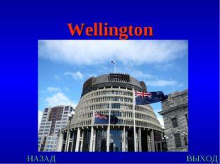 НАЗАД ВЫХОД Wellington
