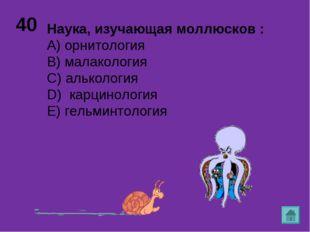 40 Наука, изучающая моллюсков : А) орнитология B) малакология C) алькология D