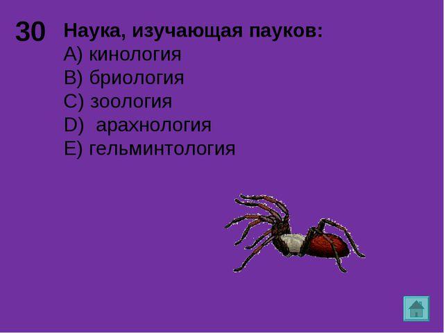 30 Наука, изучающая пауков: А) кинология B) бриология C) зоология D) арахноло...