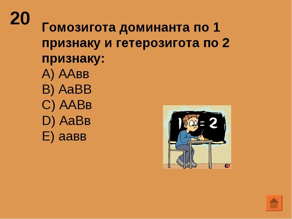 20 Гомозигота доминанта по 1 признаку и гетерозигота по 2 признаку: А) ААвв B...