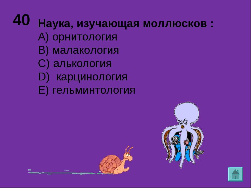 40 Наука, изучающая моллюсков : А) орнитология B) малакология C) алькология D...