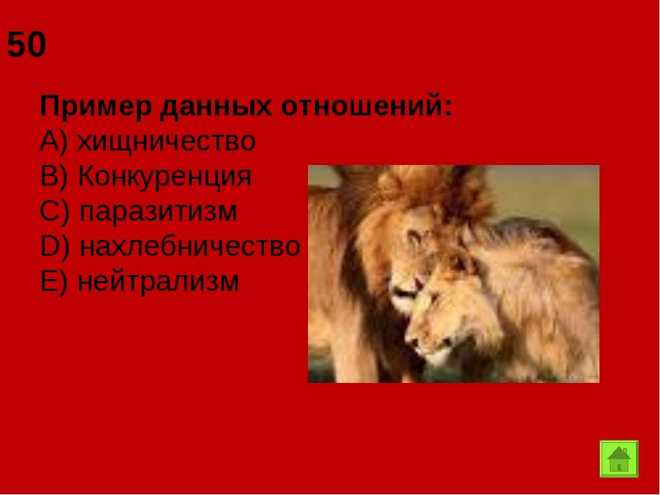 50 Пример данных отношений: А) хищничество B) Конкуренция C) паразитизм D) на...