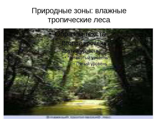 Природные зоны: влажные тропические леса