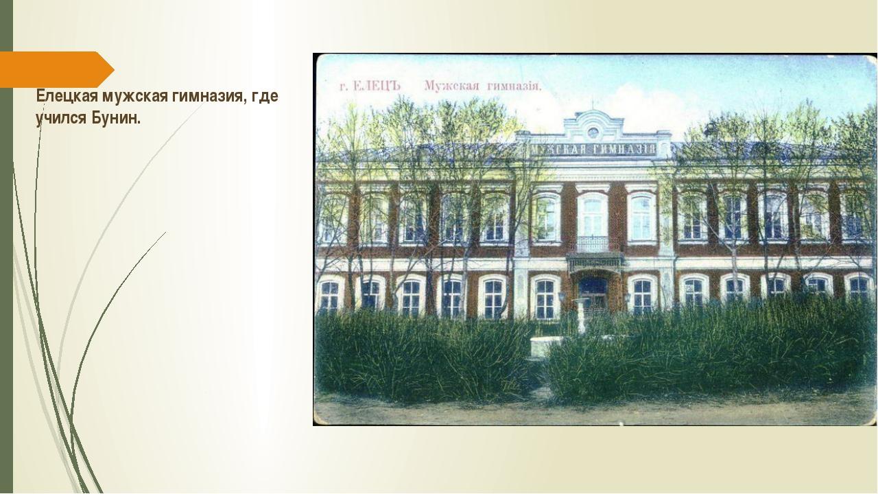 Елецкая мужская гимназия, где учился Бунин.