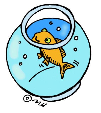 g-fishbowl4c