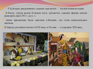 У культуры декоративных садовых хризантем— тысячелетняя история: ВКитае, о