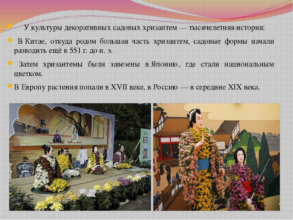 У культуры декоративных садовых хризантем— тысячелетняя история: ВКитае, о...