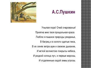 А.С.Пушкин Унылая пора! Очей очарованье! Приятна мне твоя прощальная краса Лю