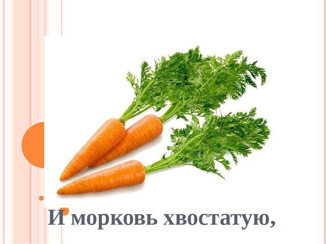 И морковь хвостатую,