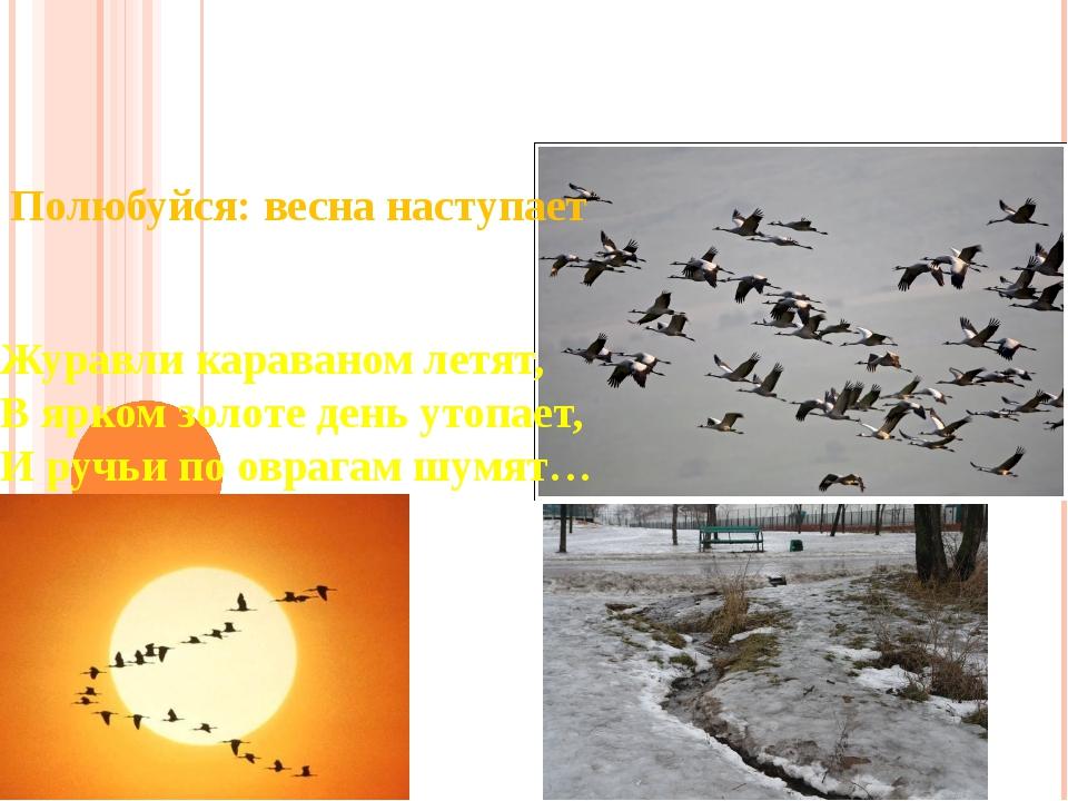 Полюбуйся: весна наступает Журавли караваном летят, В ярком золоте день утопа...