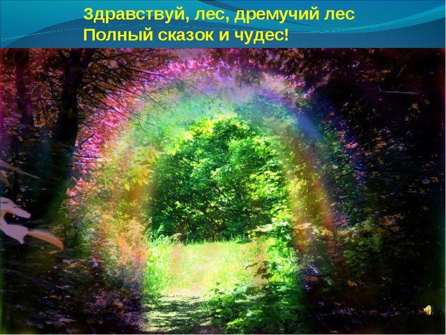 Здравствуй, лес, дремучий лес Полный сказок и чудес!