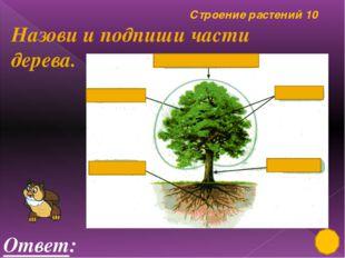 Лиственные, хвойные растения 50 Ответ: ландыш Это растение занесено в «Красну