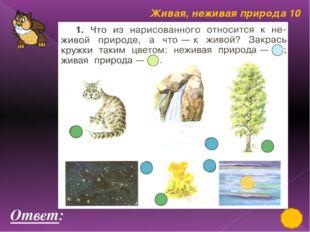 Живая, неживая природа 50 Три подружки - Вера, Оля и Таня пошли в лес по ягод