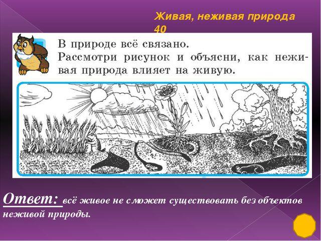 Деревья, кустарники, травы 30 Ответ: Найди и исправь ошибки. Стебли разных р...