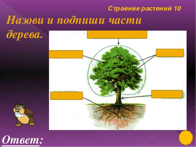 Лиственные, хвойные растения 50 Ответ: ландыш Это растение занесено в «Красну...