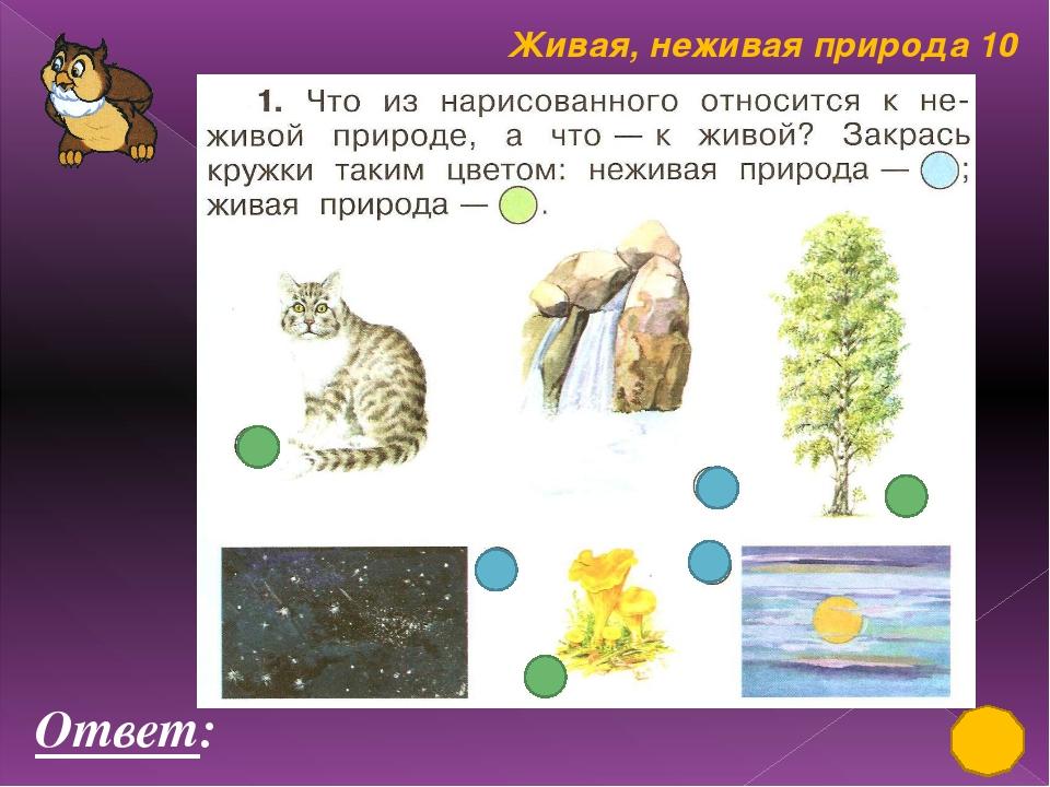 Живая, неживая природа 50 Три подружки - Вера, Оля и Таня пошли в лес по ягод...
