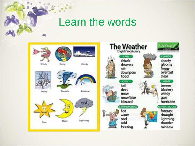 Learn the words