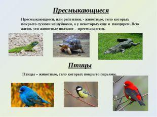Пресмыкающиеся Пресмыкающиеся, или рептилии, - животные, тело которых покрыто