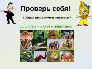 Проверь себя! 3. Какая наука изучает животных? Зоология – наука о животных.
