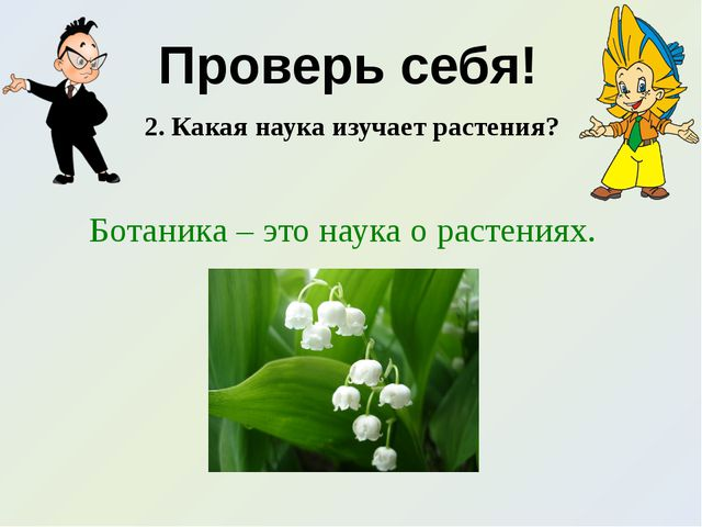 Проверь себя! 2. Какая наука изучает растения? Ботаника – это наука о растени...