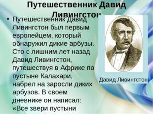 Путешественник Давид Ливингстон Путешественник Давид Ливингстон был первым ев