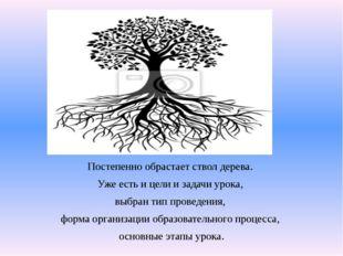 Постепенно обрастает ствол дерева.  Постепенно обрастает ствол дерева.  Уже