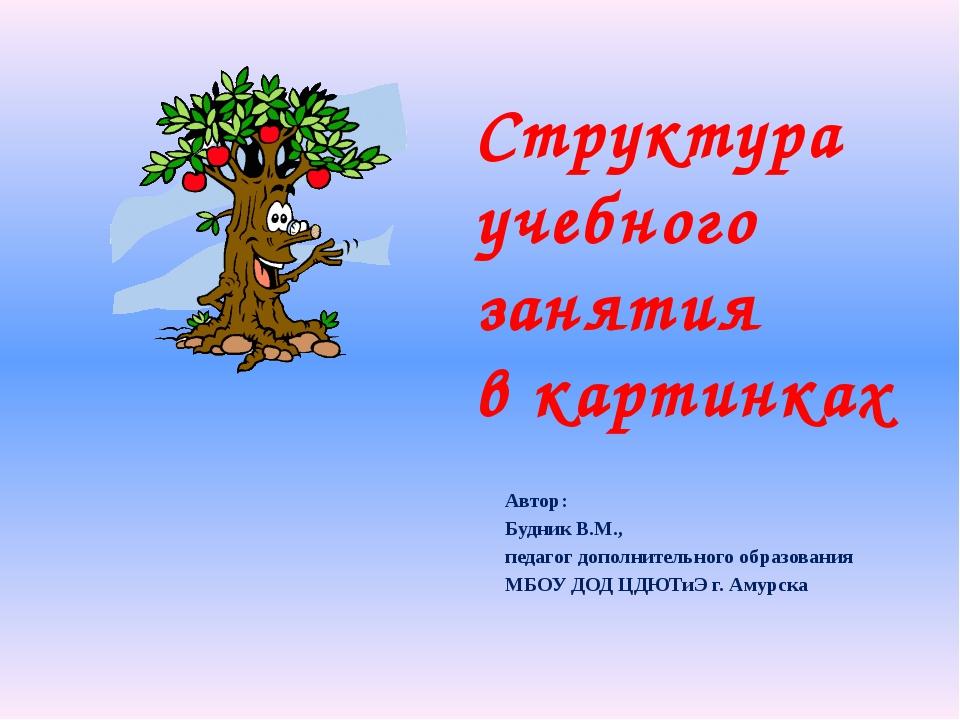 Автор:  Будник В.М.,  педагог дополнительного образования МБОУ ДОД ЦДЮТиЭ...