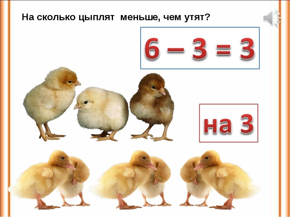 На сколько цыплят меньше, чем утят?