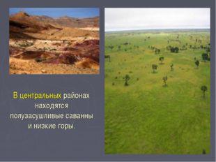В центральных районах находятся полузасушливые саванны и низкие горы.