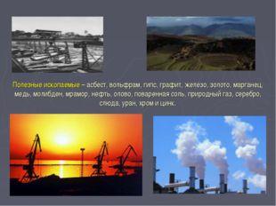 Полезные ископаемые – асбест, вольфрам, гипс, графит, железо, золото, маргане