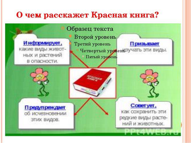 О чем расскажет Красная книга?